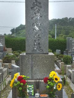 写真 安井家の墓